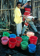 filling water buckets